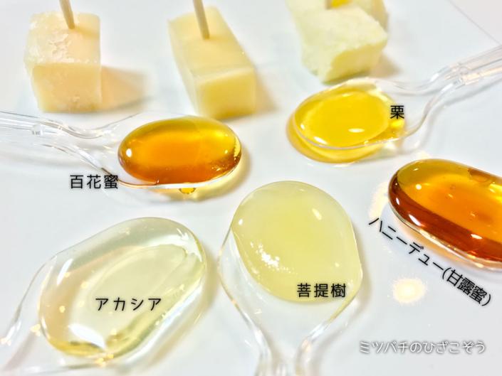 Annuncio di seminari di miele che facciamo ottobre in Giappone