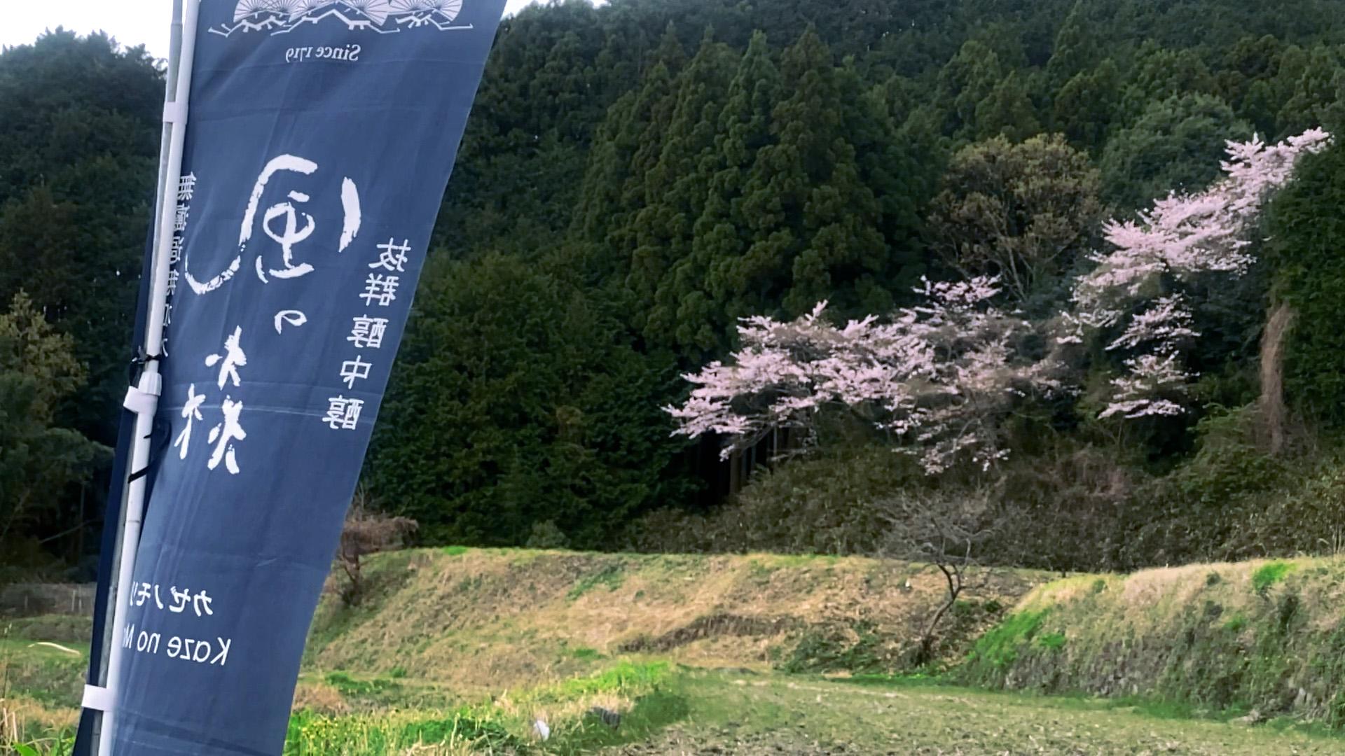 日本ミツバチ・風の森