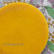 日本ミツバチ・ミツロウ